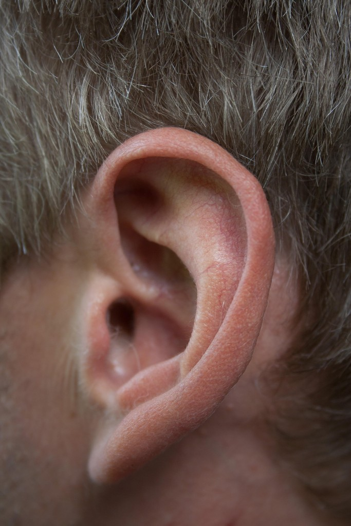 nature-body-ear